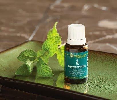 Peppermint (2)